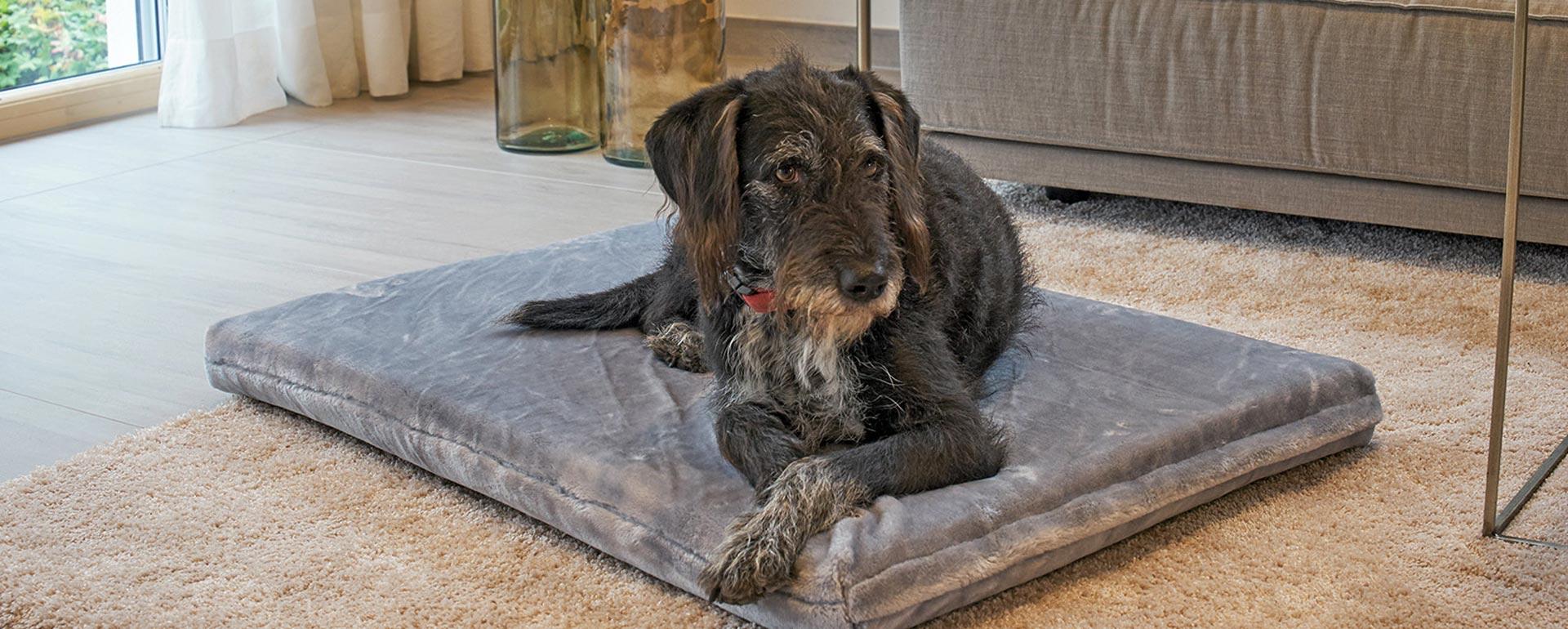 Hundematten und Hundebetten von Axero